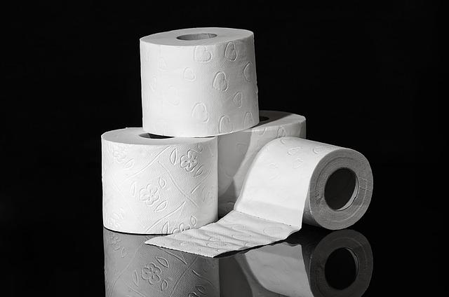 Quelques-uns des avantages d'installer un broyeur de wc dans votre salle de bain à la maison